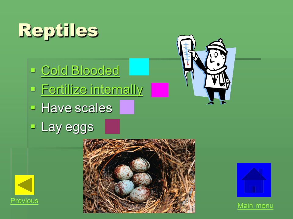 Reptiles Reptiles Cold Blooded Fertilize internally Have scales