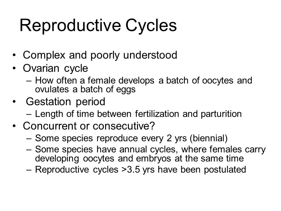 Reproductive Cycles Complex and poorly understood Ovarian cycle