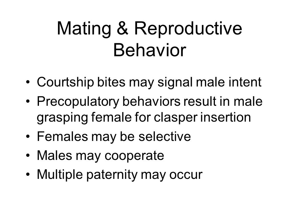 Mating & Reproductive Behavior