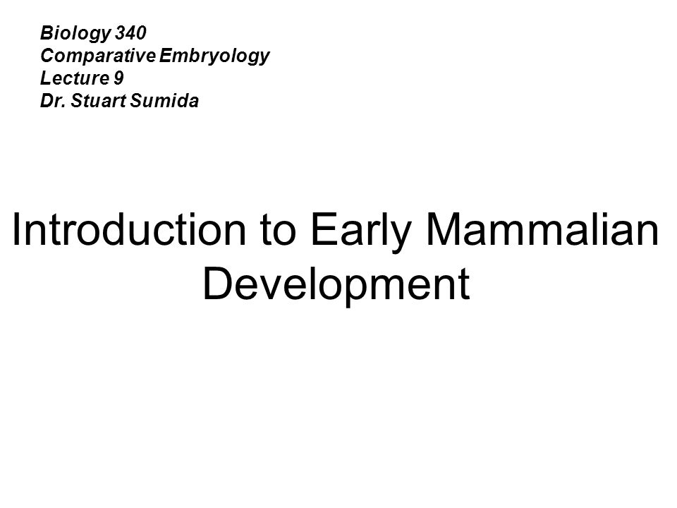 Introduction to Early Mammalian Development