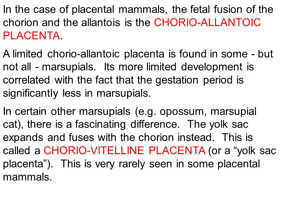 In the case of placental mammals, the fetal fusion of the chorion and the allantois is the CHORIO-ALLANTOIC PLACENTA.