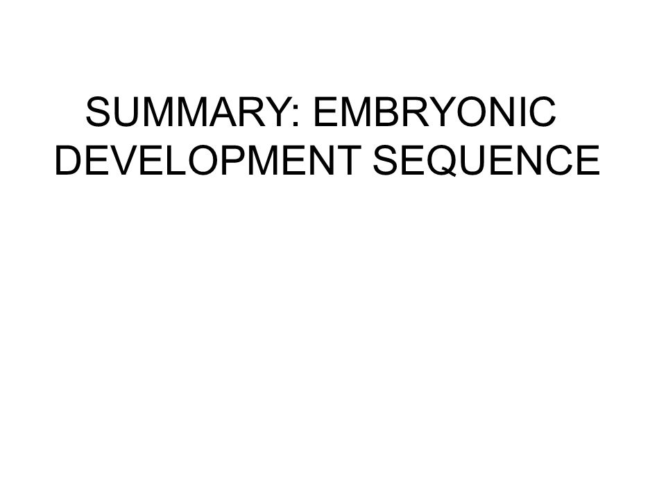 SUMMARY: EMBRYONIC DEVELOPMENT SEQUENCE