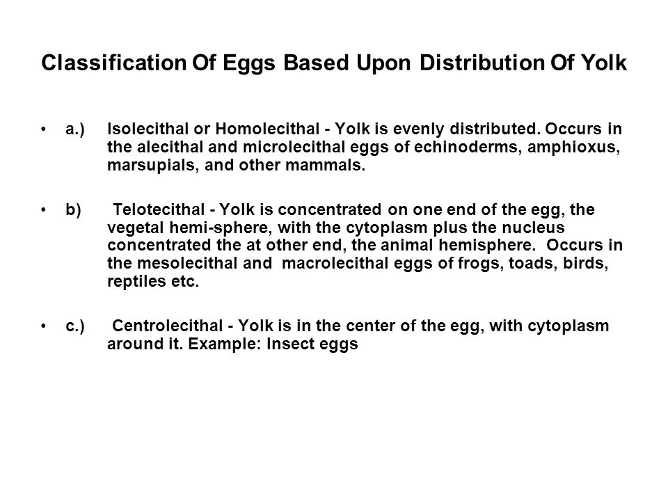 Classification Of Eggs Based Upon Distribution Of Yolk