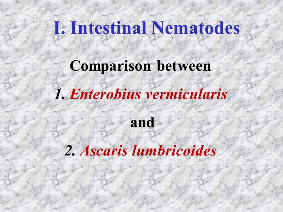 I. Intestinal Nematodes
