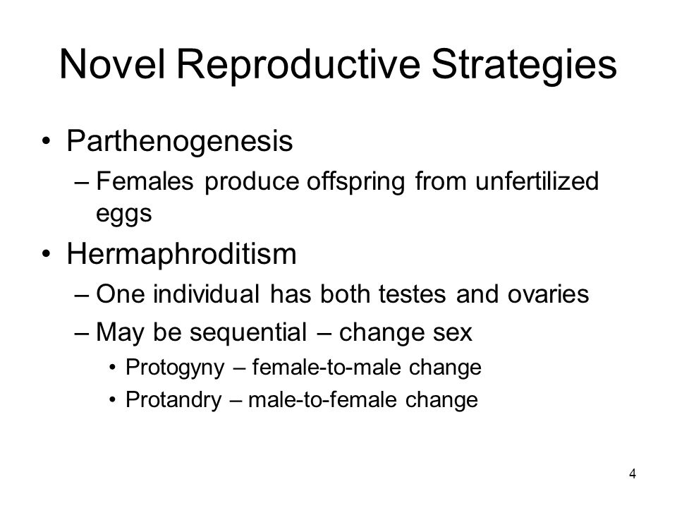 Novel Reproductive Strategies