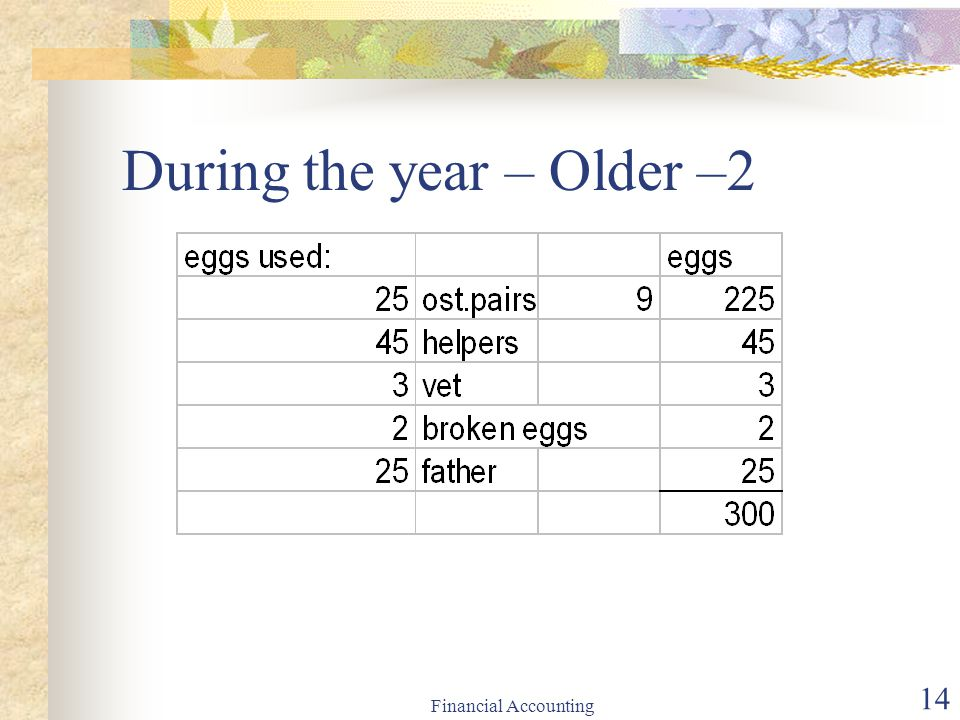 During the year – Older –2
