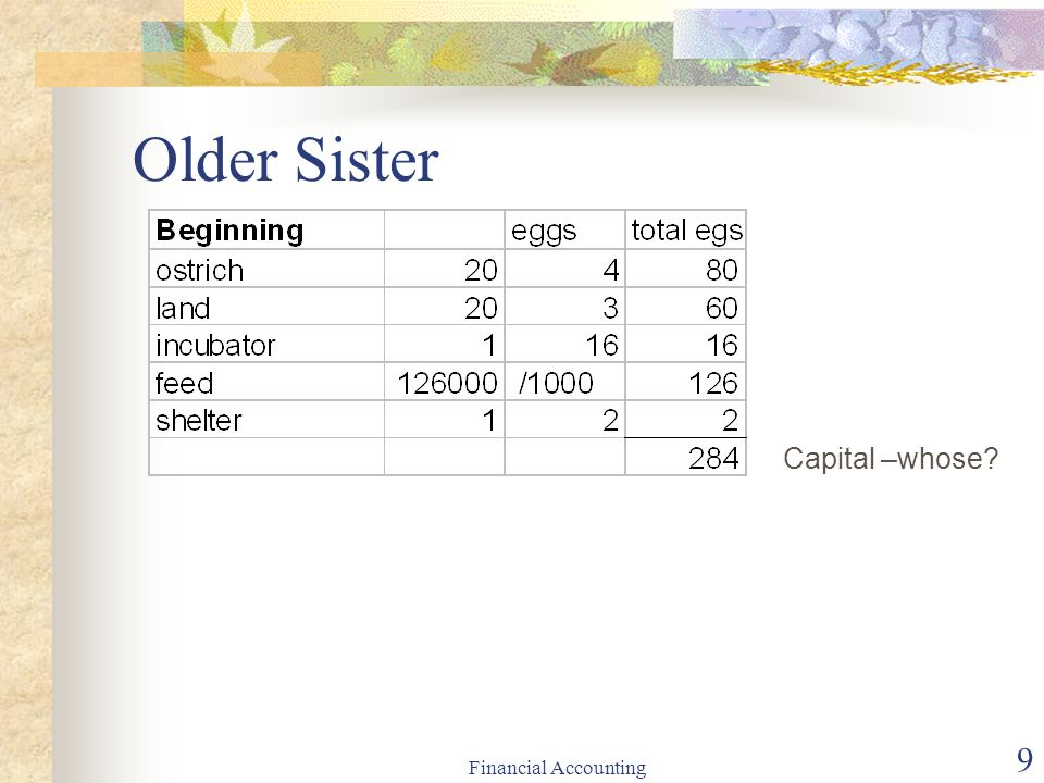 Older Sister Capital –whose Financial Accounting
