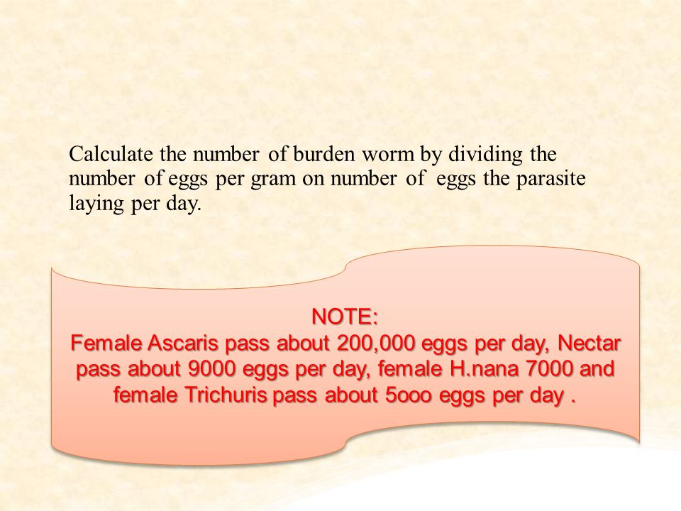 Calculate the number of burden worm by dividing the number of eggs per gram on number of eggs the parasite laying per day.
