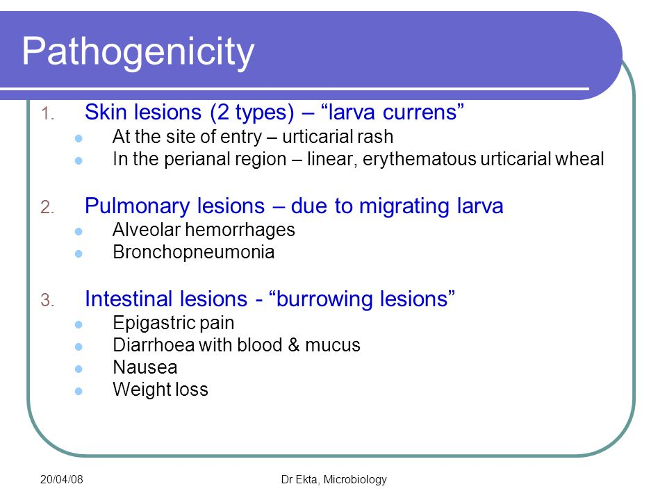 Pathogenicity Skin lesions (2 types) – larva currens