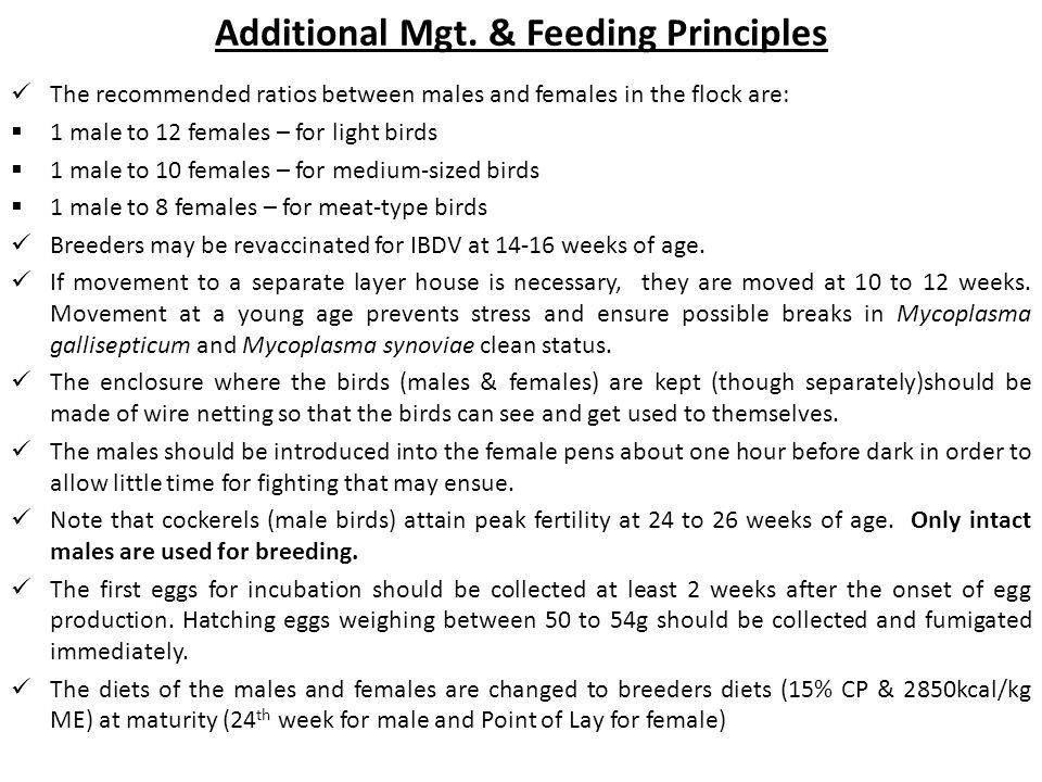 Additional Mgt. & Feeding Principles