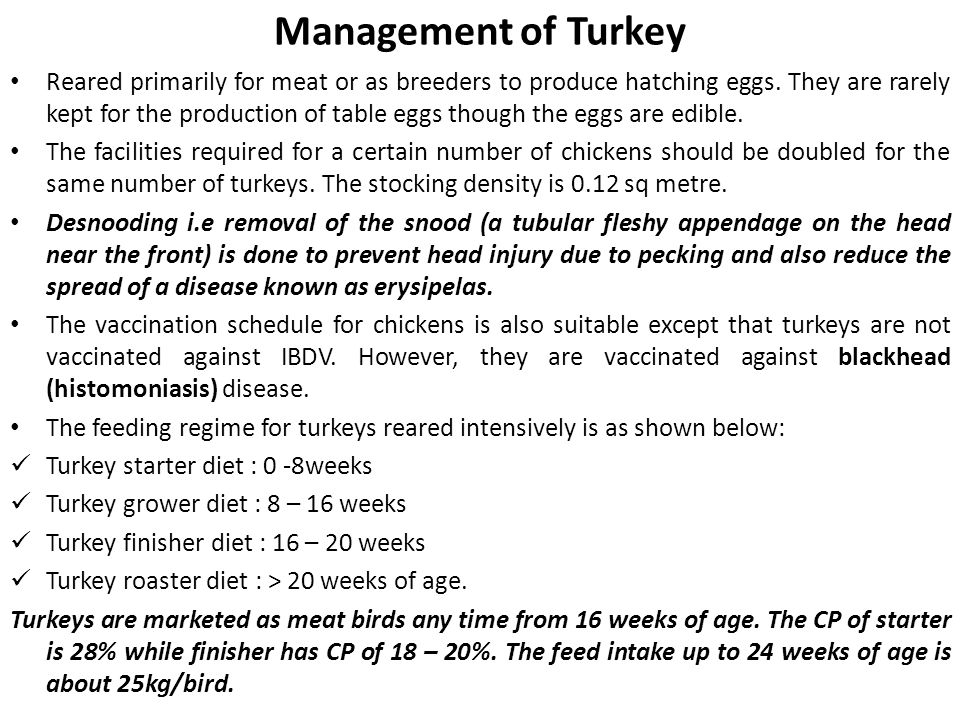 Management of Turkey