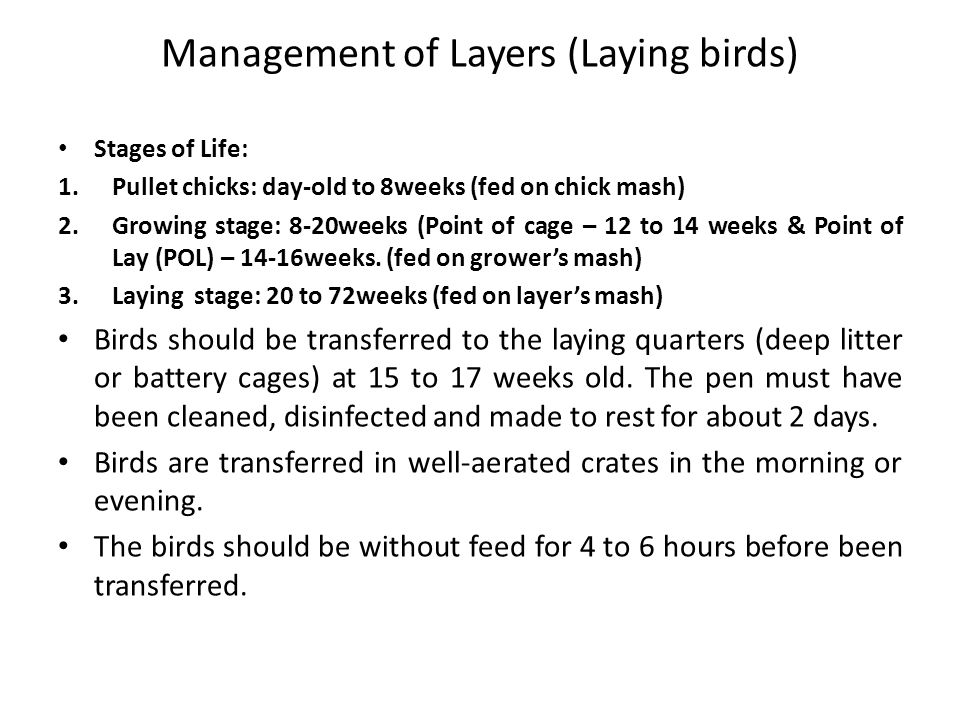 Management of Layers (Laying birds)