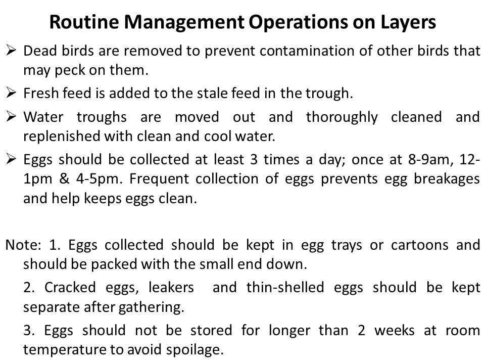 Routine Management Operations on Layers