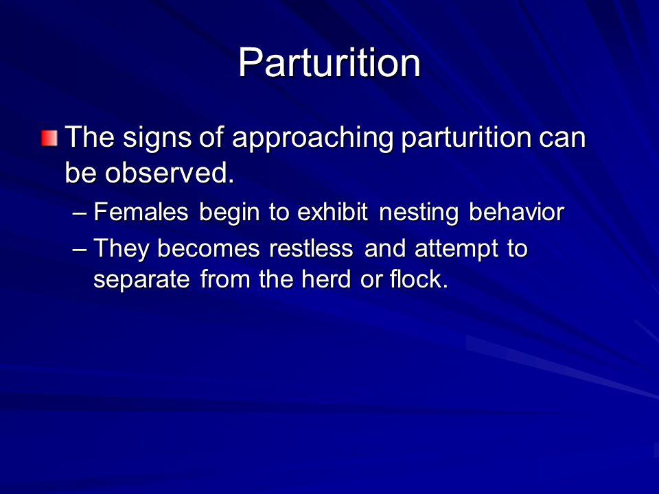 Parturition The signs of approaching parturition can be observed.
