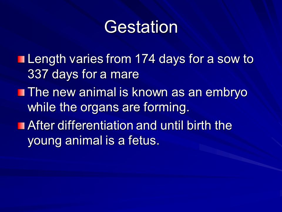 Gestation Length varies from 174 days for a sow to 337 days for a mare
