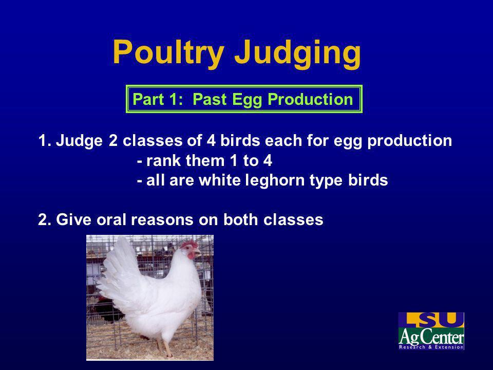 Poultry Judging Part 1: Past Egg Production