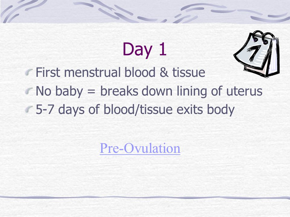 Day 1 Pre-Ovulation First menstrual blood & tissue