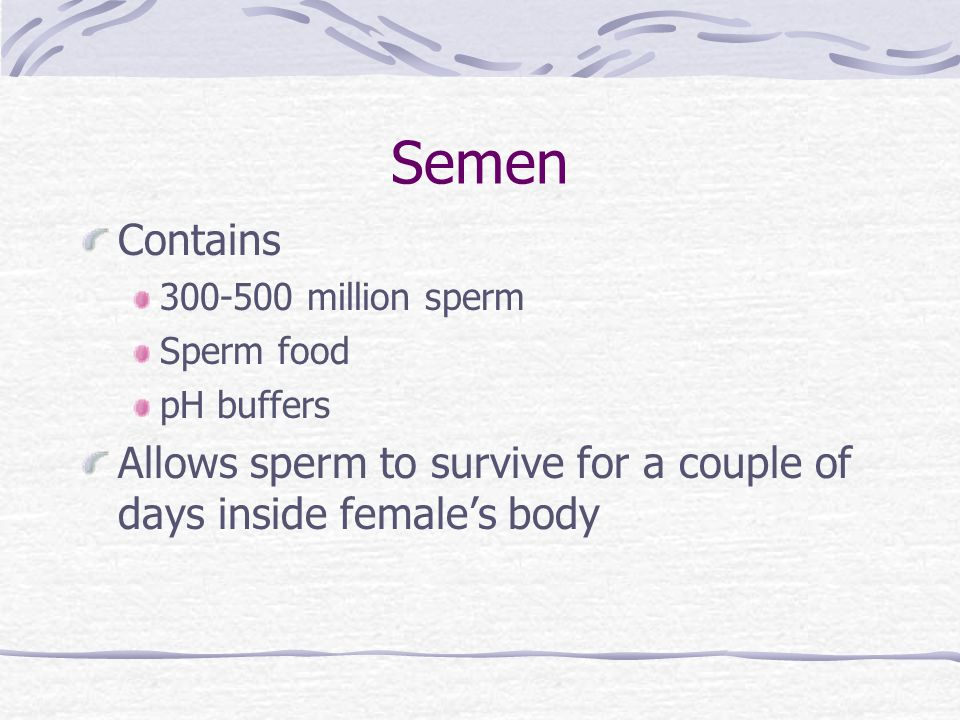 Semen Contains. 300-500 million sperm. Sperm food.