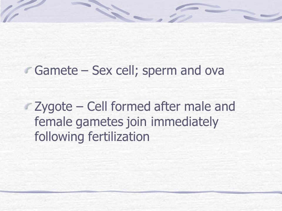 Gamete – Sex cell; sperm and ova