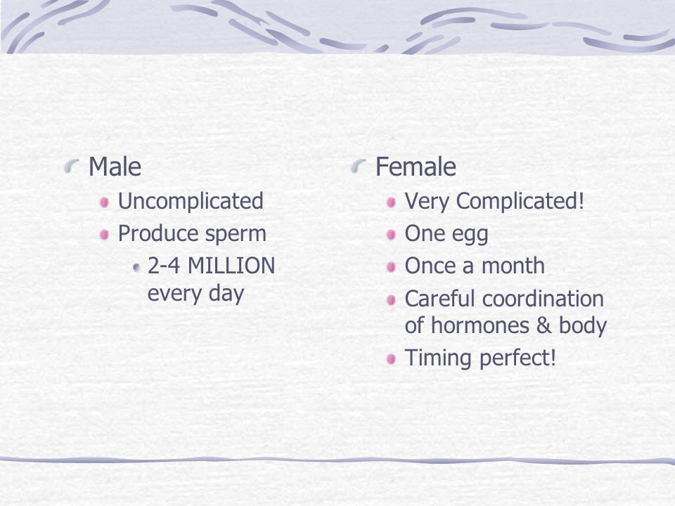 Male Female Uncomplicated Produce sperm 2-4 MILLION every day