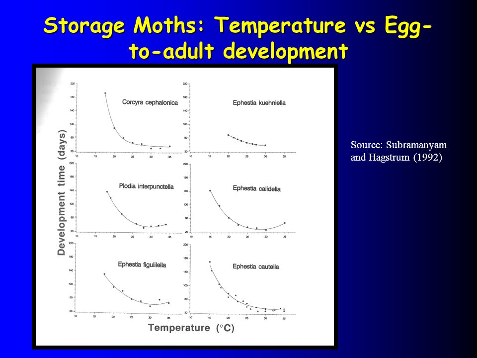 Storage Moths: Temperature vs Egg-to-adult development