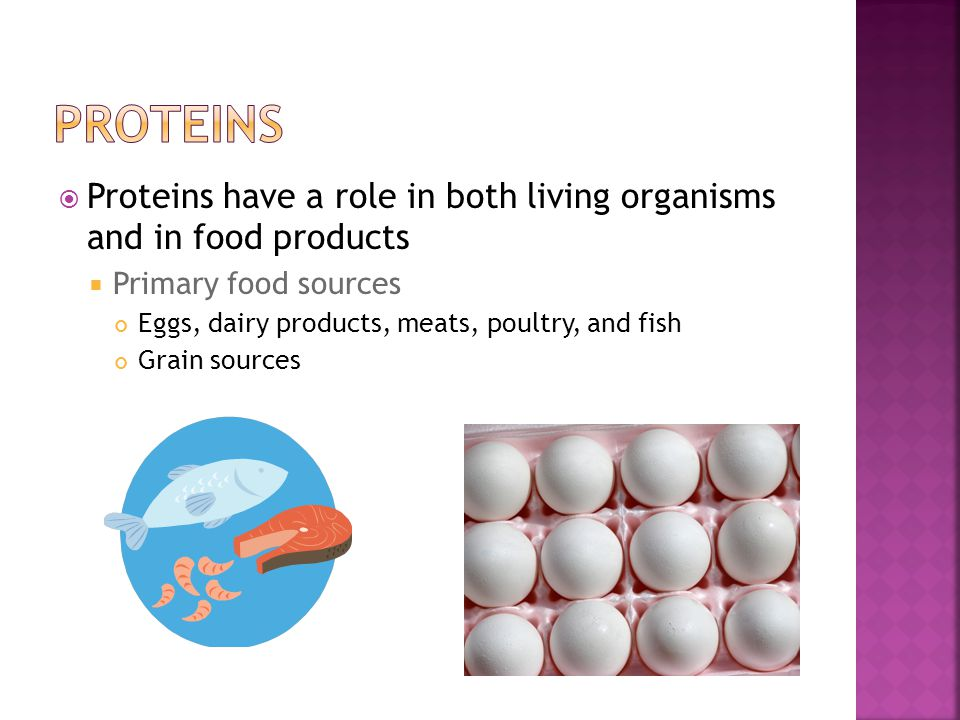Proteins Proteins have a role in both living organisms and in food products. Primary food sources.