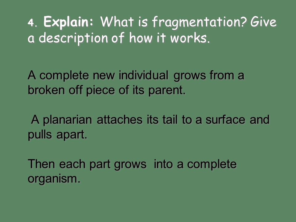 Explain: What is fragmentation Give a description of how it works.
