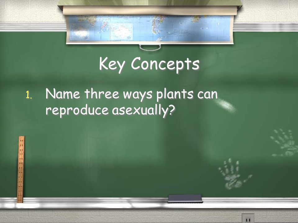 Key Concepts Name three ways plants can reproduce asexually