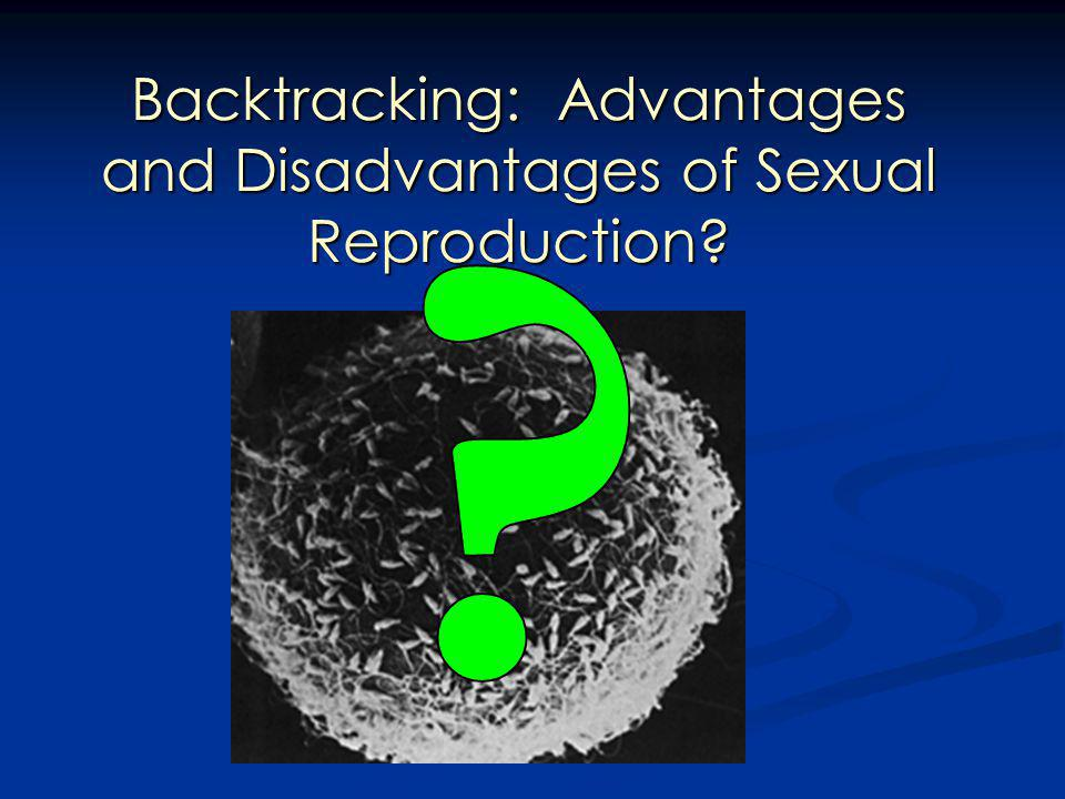 Backtracking: Advantages and Disadvantages of Sexual Reproduction