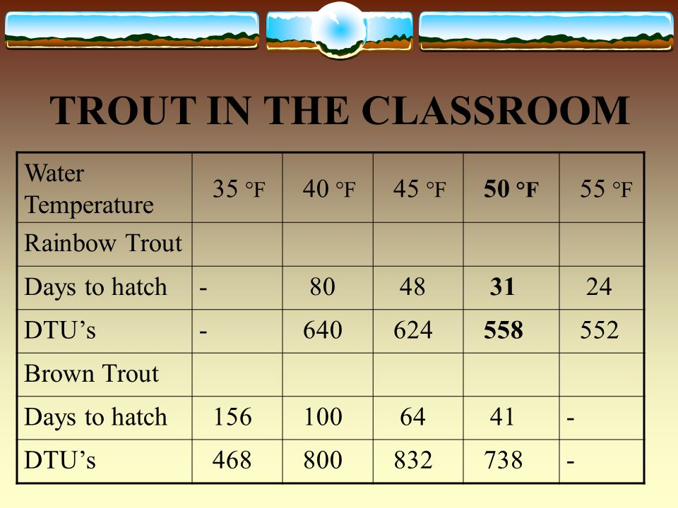 TROUT IN THE CLASSROOM Water Temperature 35 °F 40 °F 45 °F 50 °F 55 °F