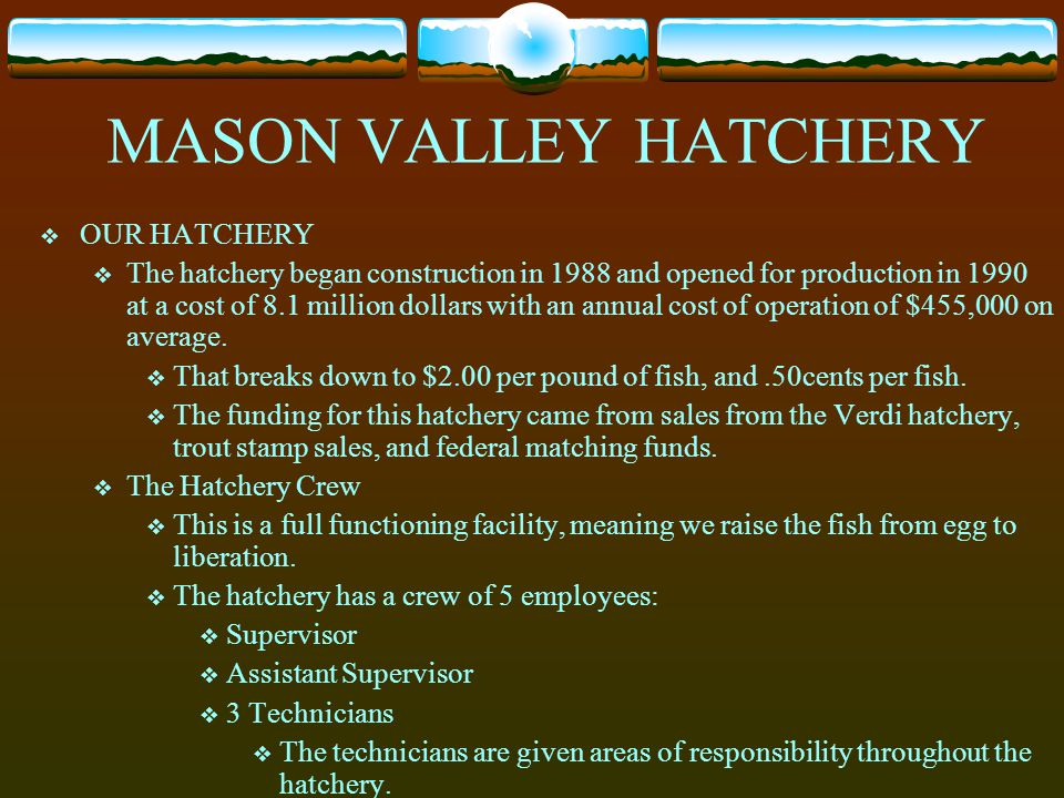 MASON VALLEY HATCHERY OUR HATCHERY