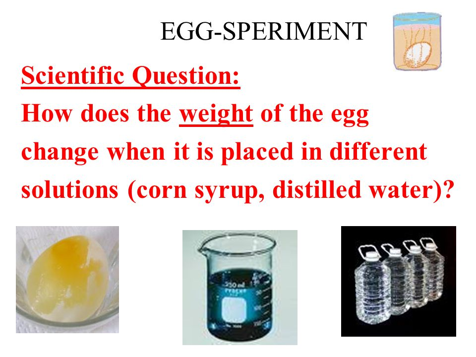 EGG-SPERIMENT Scientific Question: How does the weight of the egg. change when it is placed in different.
