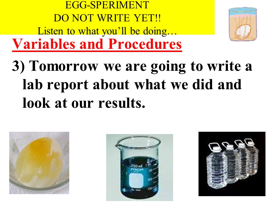 EGG-SPERIMENT DO NOT WRITE YET!! Listen to what you'll be doing…