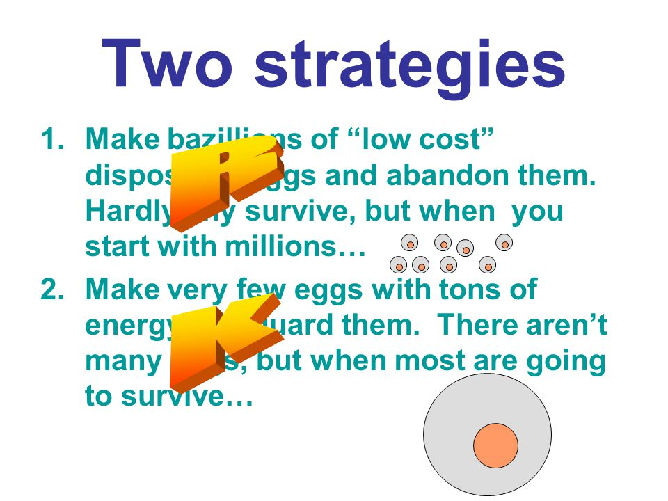 Two strategies Make bazillions of low cost disposable eggs and abandon them. Hardly any survive, but when you start with millions…