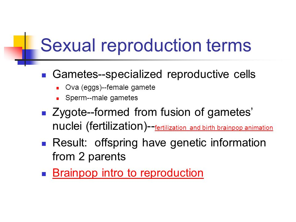 Sexual reproduction terms