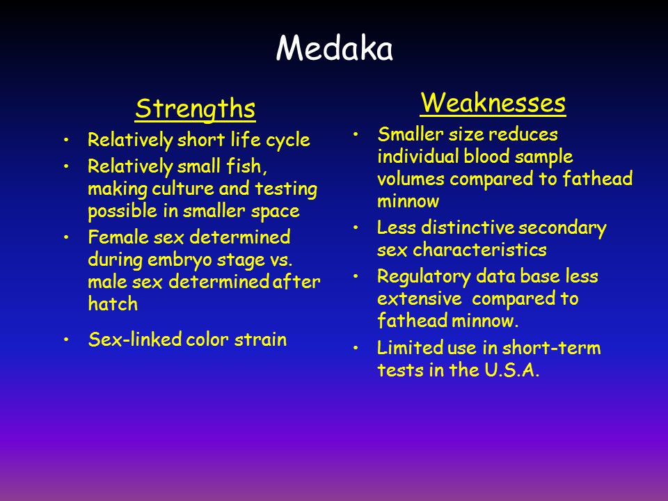 Medaka Weaknesses Strengths