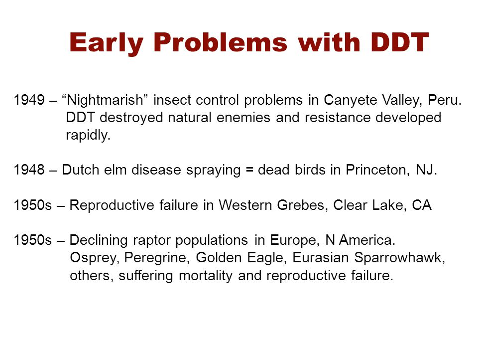 Early Problems with DDT