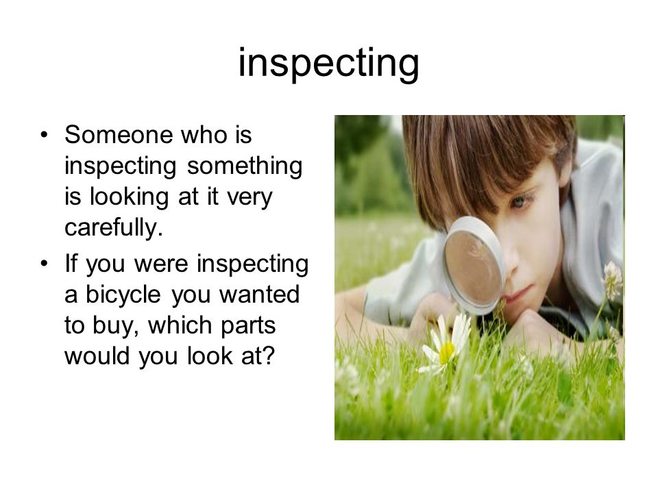 inspecting Someone who is inspecting something is looking at it very carefully.