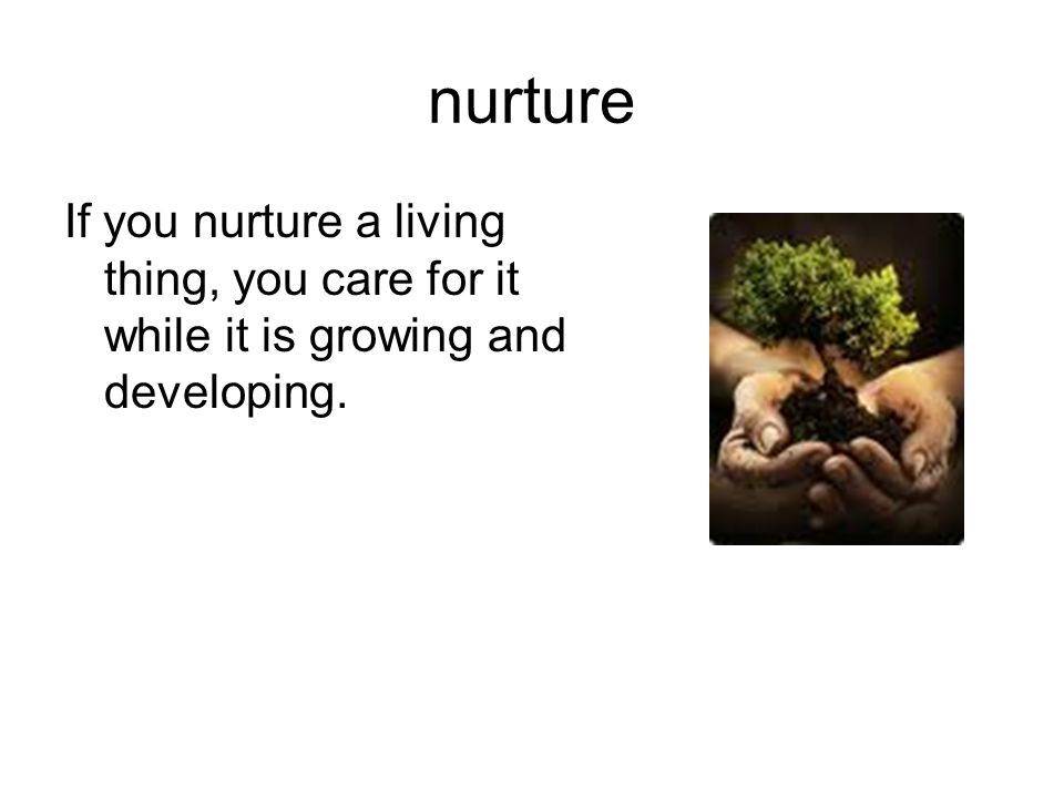 nurture If you nurture a living thing, you care for it while it is growing and developing. 22
