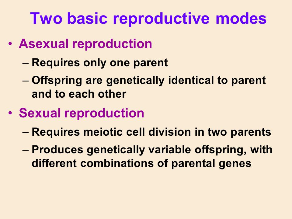Two basic reproductive modes