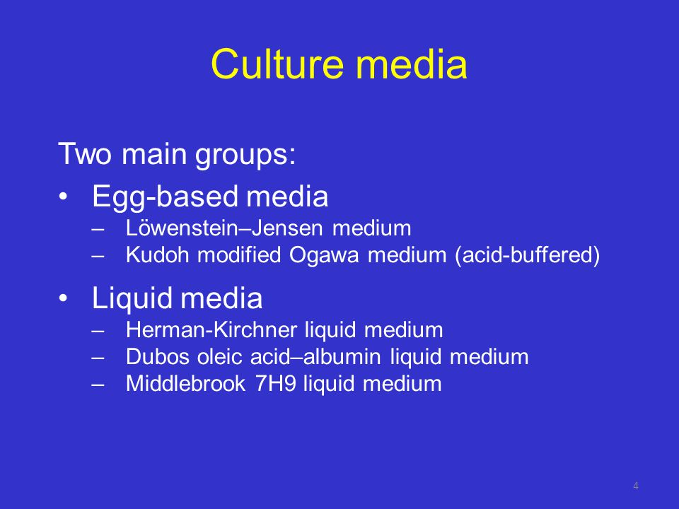 Culture media Two main groups: Egg-based media Liquid media