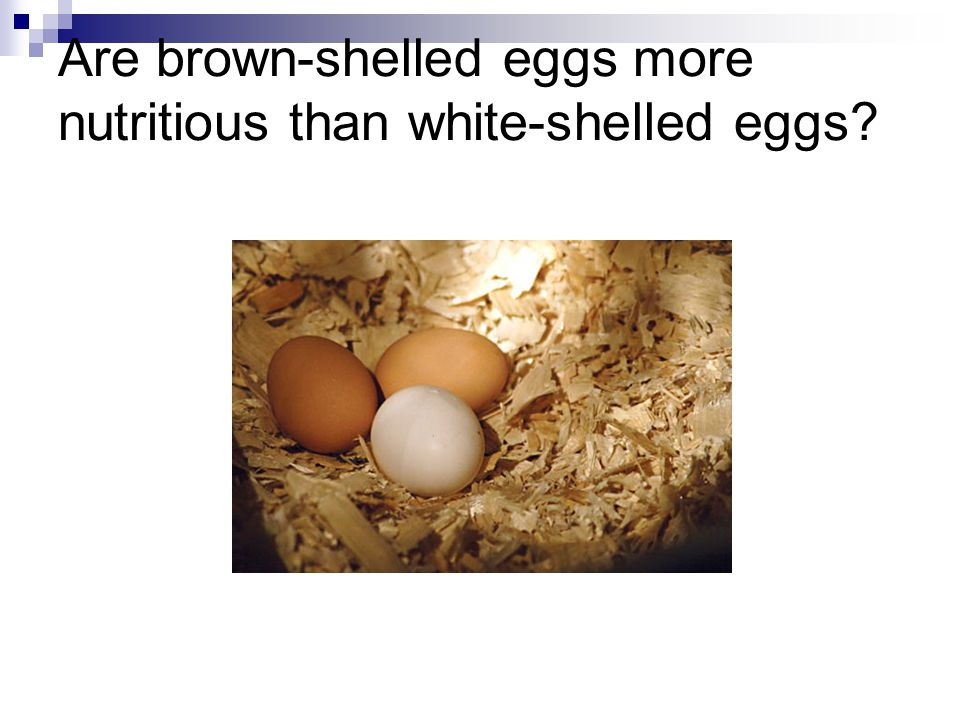 Are brown-shelled eggs more nutritious than white-shelled eggs