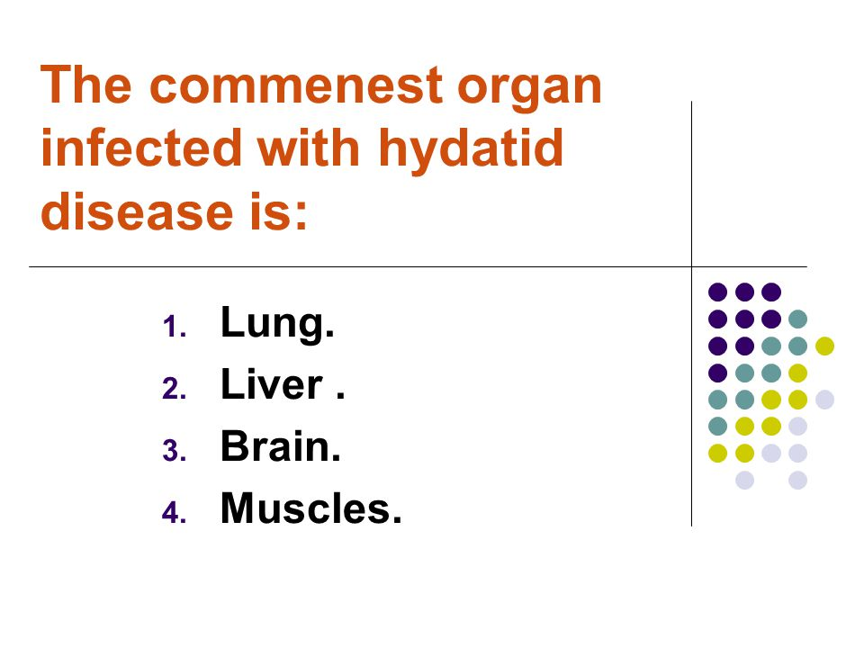 The commenest organ infected with hydatid disease is: