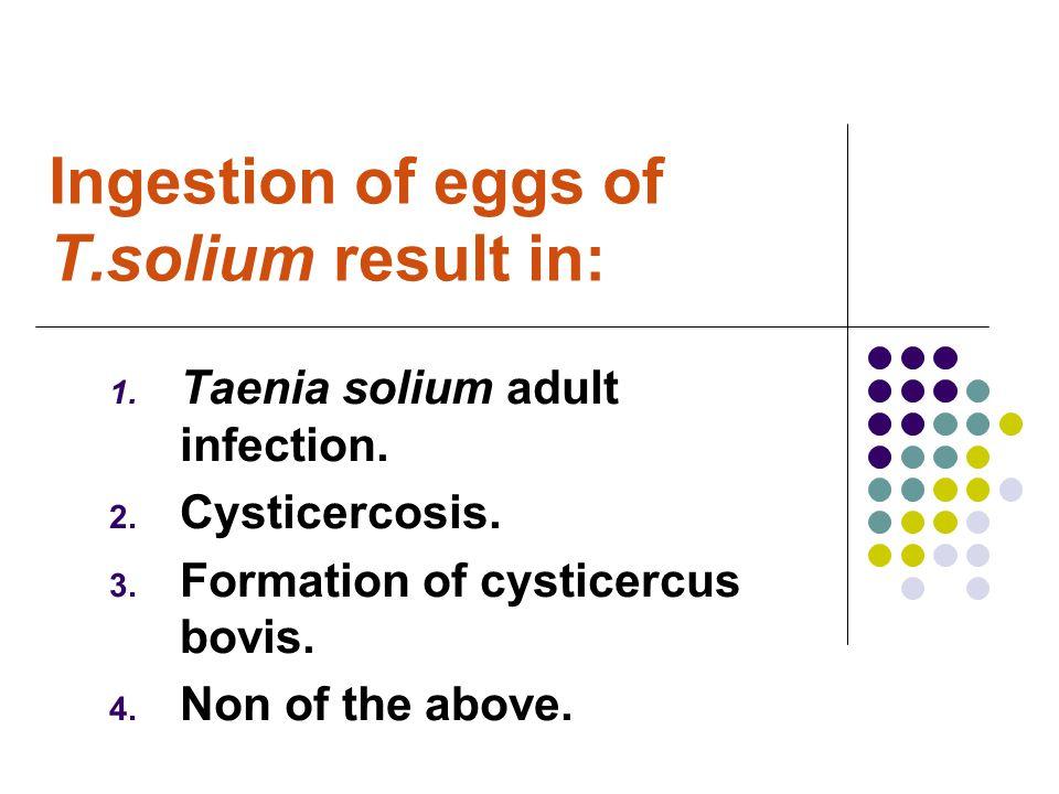 Ingestion of eggs of T.solium result in: