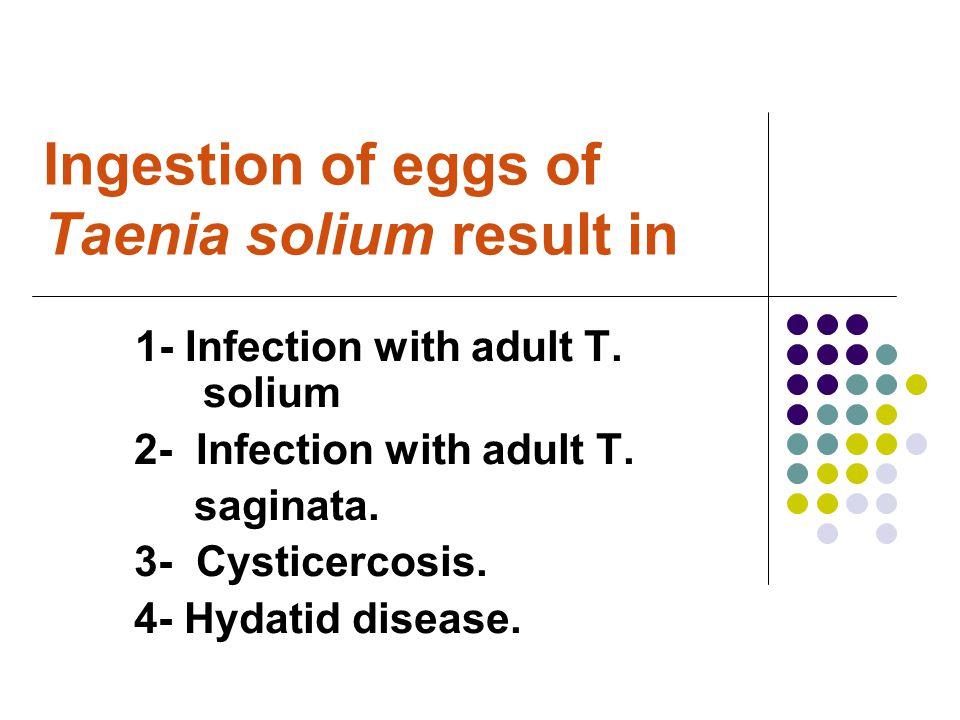 Ingestion of eggs of Taenia solium result in