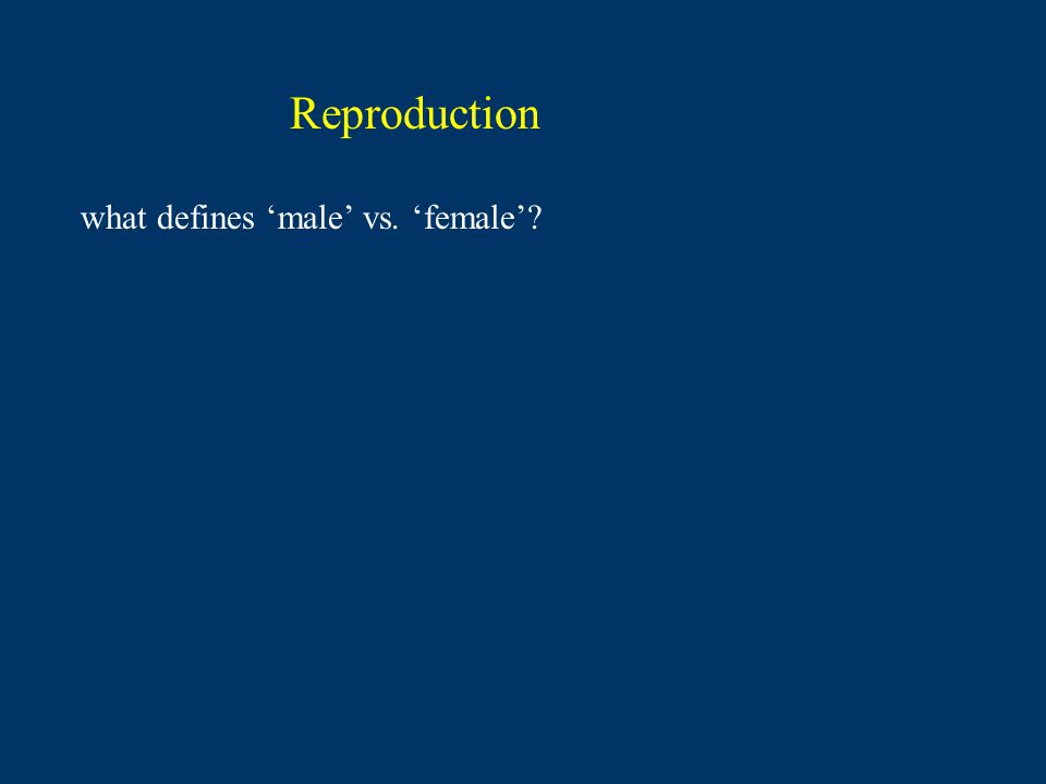 Reproduction what defines 'male' vs. 'female'