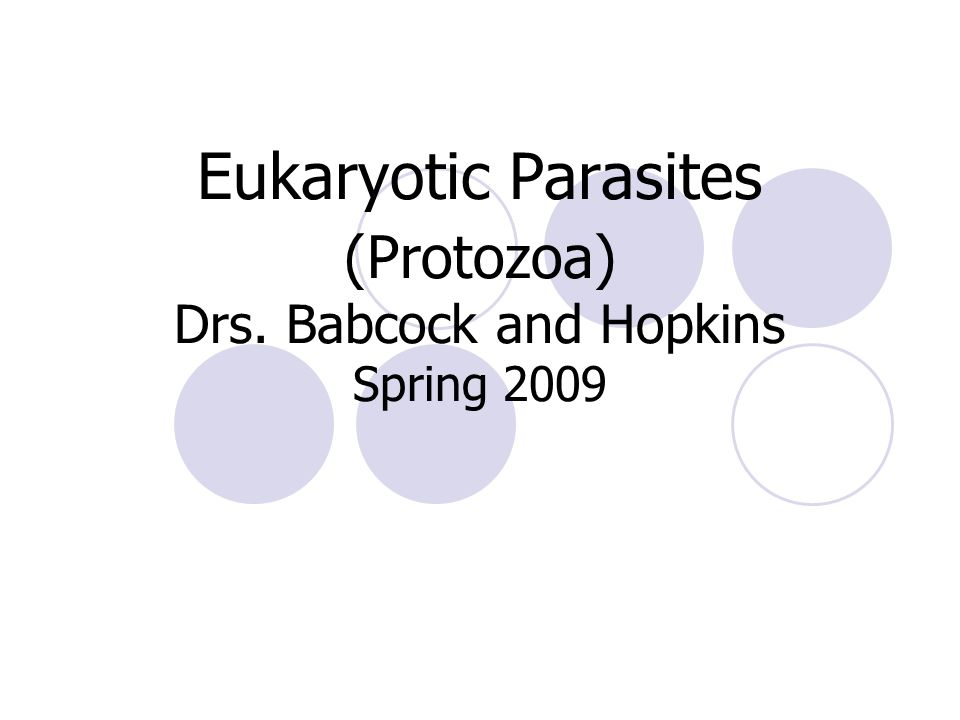 Eukaryotic Parasites (Protozoa) Drs. Babcock and Hopkins Spring 2009