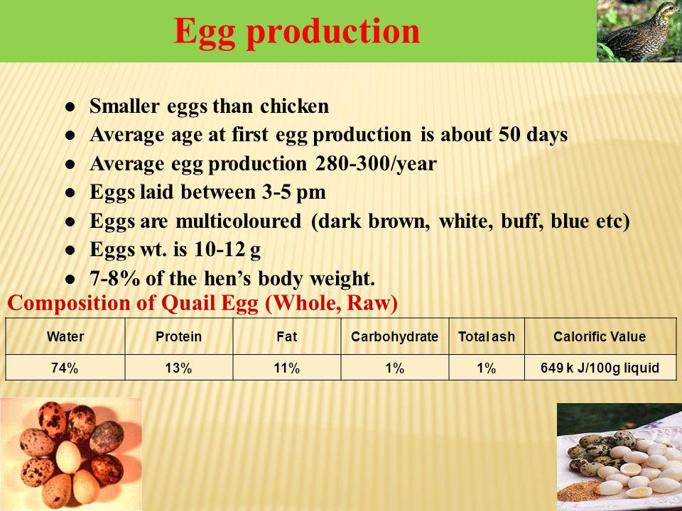 Egg production Composition of Quail Egg (Whole, Raw)