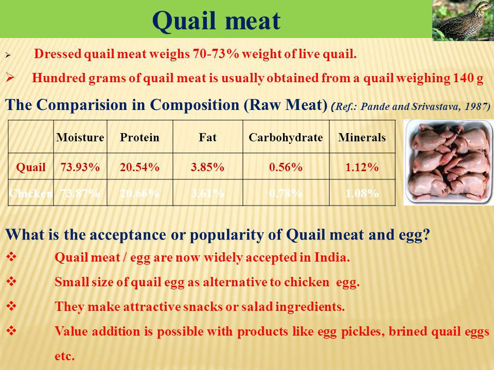 Quail meat Dressed quail meat weighs 70-73% weight of live quail. Hundred grams of quail meat is usually obtained from a quail weighing 140 g.