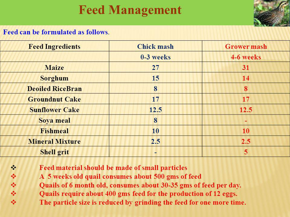Feed Management Feed can be formulated as follows. Feed Ingredients